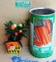 επαγκελματικός σπόρος καρότο