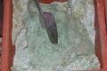 καραμπογια